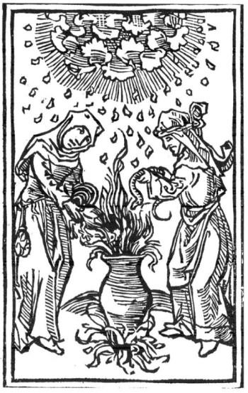 kollen heksen hofland